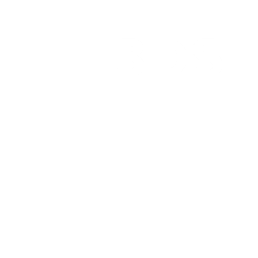 3ds format
